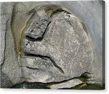 Canvas Print featuring the photograph Face In The Rock by Brian Sereda