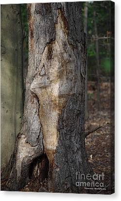 Canvas Print featuring the photograph Face In The Tree by Tannis  Baldwin