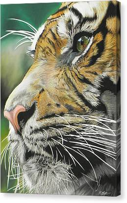 Face Of The Hunter Canvas Print by Paul Miners