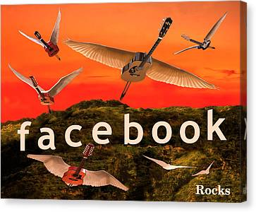 Facebook Rocks Canvas Print by Eric Kempson