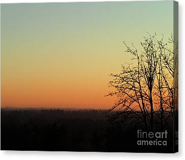 Canvas Print featuring the photograph Fading Day by Gayle Swigart