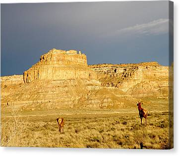 Fajada Butte At Sunset With Elk Canvas Print