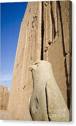 Falcon Statue At Edfu Canvas Print by Darcy Michaelchuk