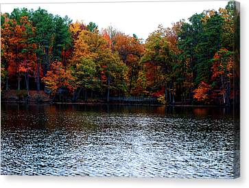 Fall Across The Lake Canvas Print by Linda Mesibov