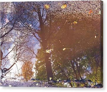 Fall Asphalt Canvas Print by Anna Villarreal Garbis