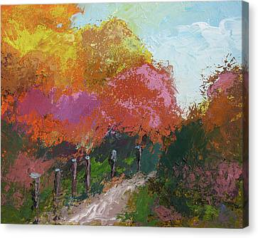 Fall Color Canvas Print by Robert Bissett