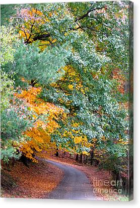 Canvas Print featuring the photograph Fall Colored Country Road by Joan McArthur