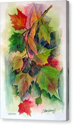 Fall Colors Canvas Print by John Smeulders