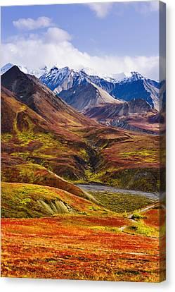 Fall Colours And Alaska Range, Denali Canvas Print by Yves Marcoux
