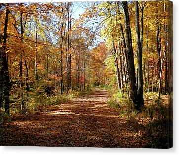 Fall Coming On Canvas Print by Paul Mashburn