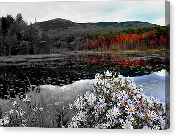 Fall Creeps In Canvas Print by Rick  Blood