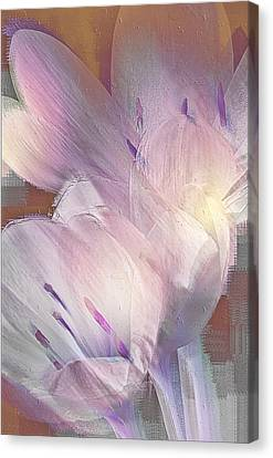 Fall Crocus Canvas Print by Jill Balsam