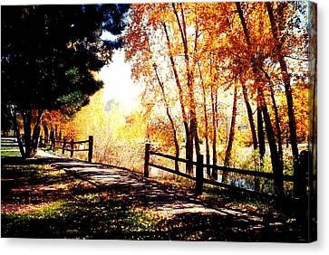 Fall Day Canvas Print by David Alvarez
