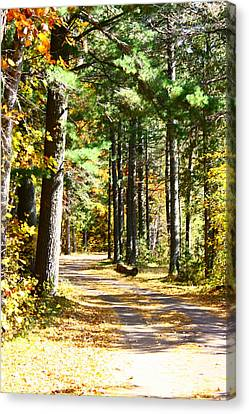 Canvas Print featuring the photograph Fall Day To Remember by Paula Brown