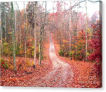 Canvas Print featuring the photograph Fall Drive by Gretchen Allen