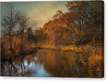 Fall Finale Canvas Print by Robin-Lee Vieira