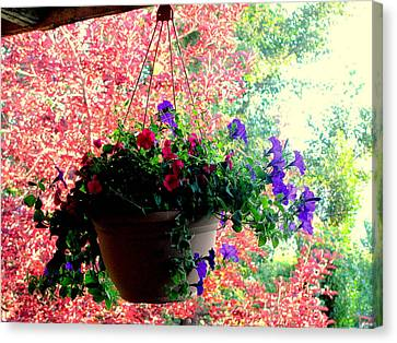 Fall Flowers Canvas Print by Amy Bradley