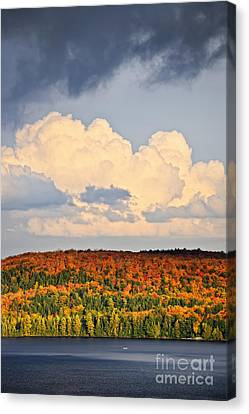 Fall Forest And Lake Canvas Print by Elena Elisseeva