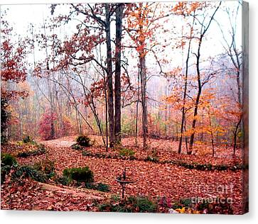 Canvas Print featuring the photograph Fall by Gretchen Allen