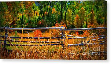 Canvas Print featuring the photograph Fall  by Janice Westerberg