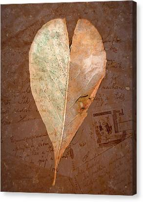 Fall Love Letters Canvas Print by Cindy Wright