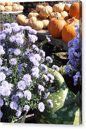 Farm Stand Canvas Print - Fall Medley by Kimberly Perry