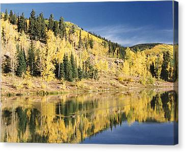Fall Mirror Image Canvas Print by Stacey Grant