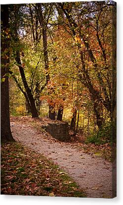 Fall Path Canvas Print