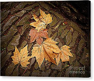 Fall Pattern Canvas Print