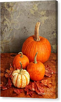 Canvas Print featuring the photograph Fall Pumpkin And Decorative Squash by Verena Matthew