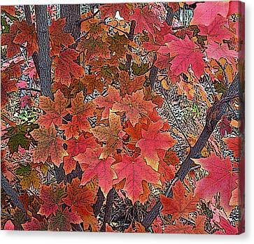 Fall Red Canvas Print