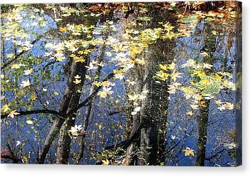 Canvas Print featuring the photograph Fall Reflections by I'ina Van Lawick