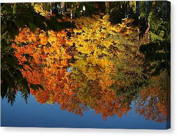 Fall Reflectionsin Michigan Canvas Print