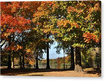 Fall Trees And Lake Canvas Print by Diane Lent