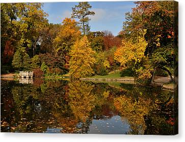 Fall Trees In Mirror Image Canvas Print by Diane Lent