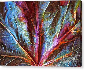 Fall Up Close Canvas Print by Gwyn Newcombe