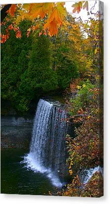 Fall Waterfall Canvas Print by Shirley Mailloux