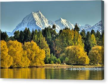 Fall Willow And Cottonwoods At Lake Canvas Print