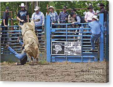 Fallen Cowboy Canvas Print by Sean Griffin