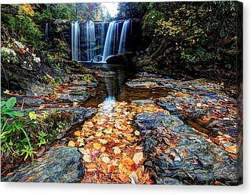 Canvas Print featuring the photograph Fallen Leaves by Doug McPherson