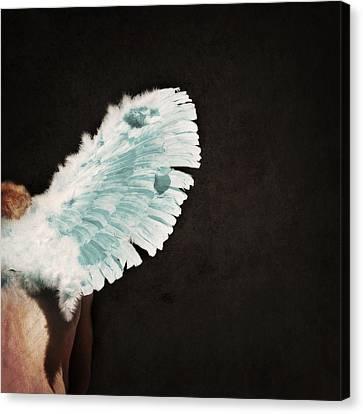 Aerosmith Canvas Print - Fallen by Lisa Knechtel