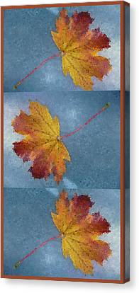 Falling Autumn Leaves Canvas Print