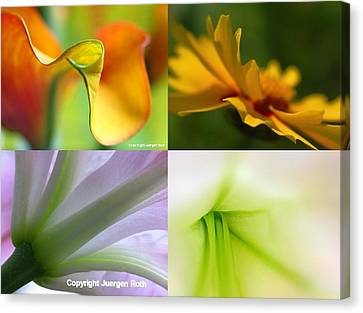 Floral Canvas Print - Falling In Love With ... by Juergen Roth
