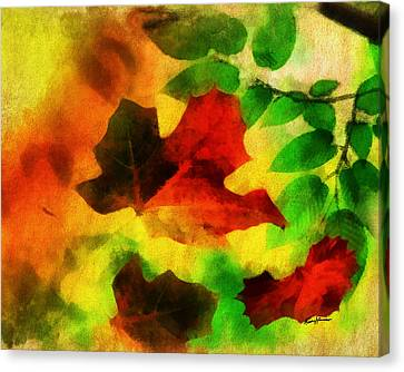 Falling Leaves Canvas Print by Anthony Caruso
