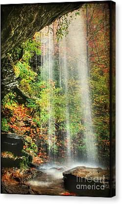 Falling Softly Canvas Print by Darren Fisher