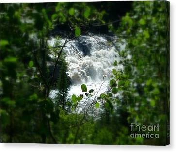 Falls In Forest Frame Canvas Print by Art Studio