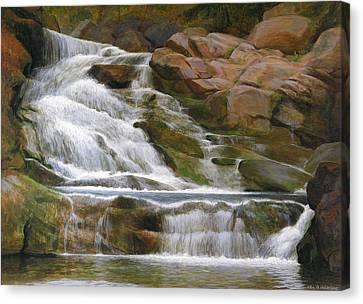 Falls Of Doodletown Creek Canvas Print by Glen Heberling