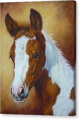 Fancy Portrait Canvas Print by Margaret Stockdale