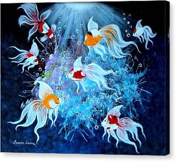 Fantailia Canvas Print by Fram Cama