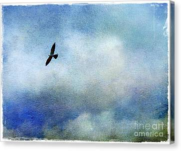 Far Above Canvas Print by Judi Bagwell
